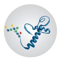 glycan subunit analysis